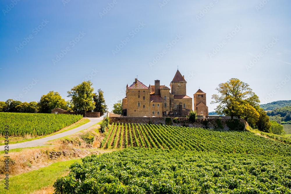 Fototapety, obrazy: Le Châtreau de Pierreclos en Bourgogne