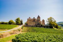 Le Châtreau De Pierreclos En Bourgogne