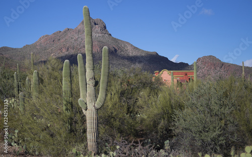 Arizona Desert Peaks