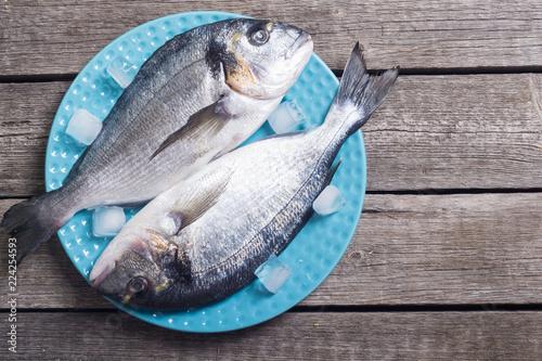 Foto op Aluminium Vis Raw dorado fish in plate with ice