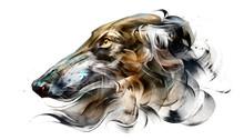 Painted Portrait Of Dog Borzoi On White Background