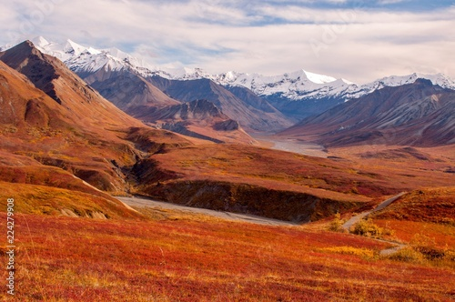 Keuken foto achterwand Rood traf. Colorful fall day in Alaska