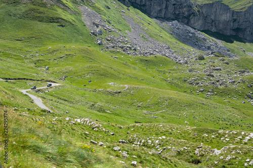 Fototapeta Wyprawa w góry samochodami terenowymi obraz na płótnie