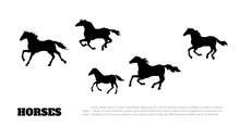 Black Silhouette Of Running Horses. Isolated Detailed Drawing Of Mustang Herd On White Background. Side View. Western Landscape