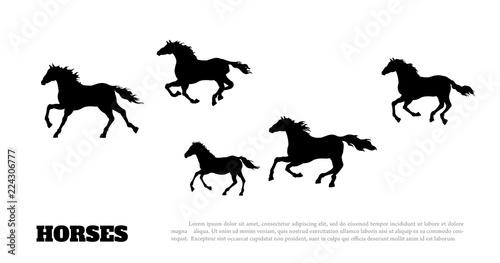 Платно Black silhouette of running horses