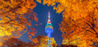 canvas print picture - Fall color change at N seoul tower in the autumn where is the landmark of Seoul city in South Korea