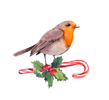 Robin Bird On Candy Cane And X...