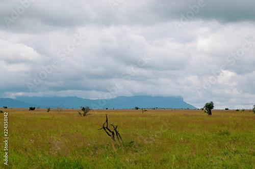 The savannah landscapes of Taita Hills Wildlife Sanctuary, Voi, Kenya