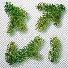 Christmas Tree Branches Set For A Christmas Decor. Branches Close-up. Collection Of Fir Branches. Realistic Vector Illustration Isolated On Background
