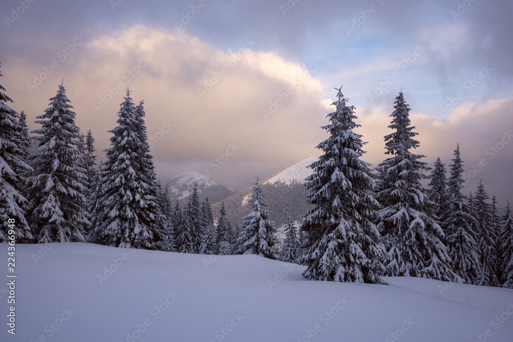 Magical sunset in the winter mountains after snowfall