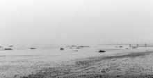 Misty Winter Beach