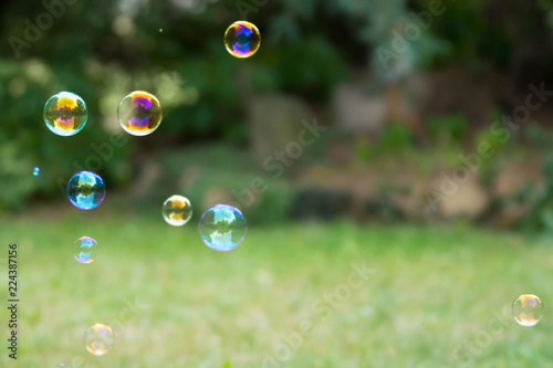Recess Fitting India Group of colorful soap bubbles at the green background in a garden