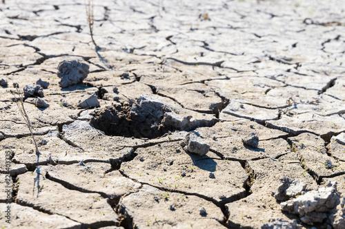 Fotografie, Obraz  Close-up of dry land during hot summer days