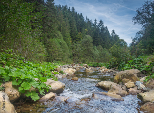 River in mountains with rocks, green grass on riverside. Mountain landscape, beautiful sky, clouds. Idea for outdoor activities, tourism, travel , adventure.