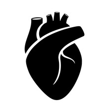 Human Heart Medical Vector Icon