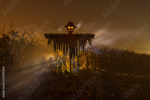 Obraz na plátně Sinister scarecrow for Halloween