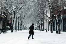 A Man Walks Through A Blizzard...