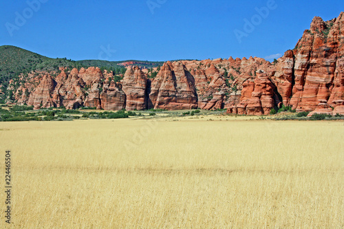 White pasture and red cliffs - Utah