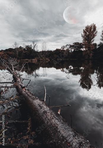 natura-staw-w-jesieni