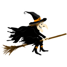 Halloween Witch Isolated