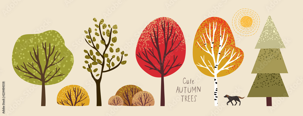 Fototapeta autumn trees, set of vector illustrations of cute trees and shrubs: oak, birch, aspen, linden, fir, sun and dog