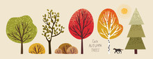 Autumn Trees, Set Of Vector Il...
