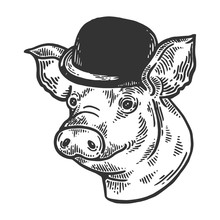 Pig Animal In Bowler Hat Engra...