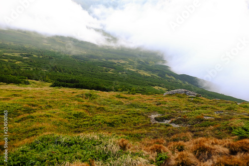 Fotobehang Wit blossoming slopes, beautiful mountains in the morning in the fog