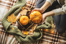 Autumn Still Life From Tray Full Of Pumpkin, Leaves, Cones, Scarf, Mug Of Cocoa, Coffee Or Hot Chocolate With Marshmallow On Plaid With Garland. Woman's Hand Holding Cup. Concept Warm Home Comfort.