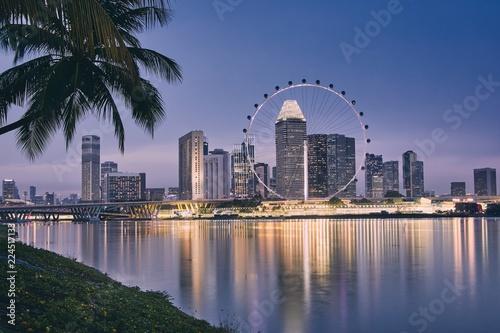 Foto op Plexiglas Singapore Singapore skyline at dusk