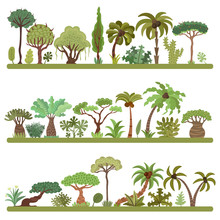 Collection Of Tropical Trees, Palms And Other Tropical Exotic Plants Vector Illustration Set. Lush Forest. Rainforest Jungle Trees, Plants, Shrubs, Leaves And Bushes, Paradise Beach Resort Crooked