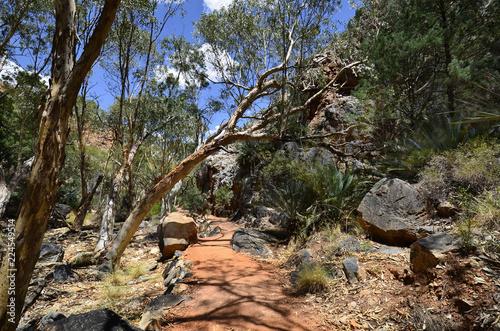 Foto op Plexiglas Oceanië Australia, Northern Territory, McDonnell Range