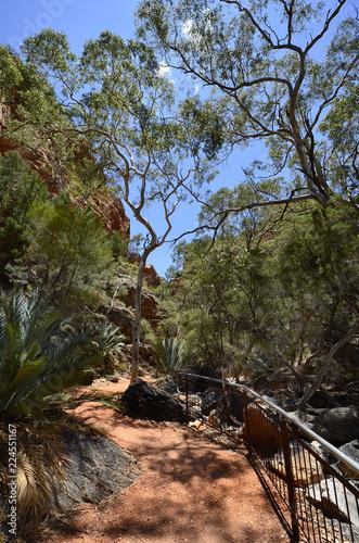 Staande foto Oceanië Australia, Northern Territory, McDonnell Range