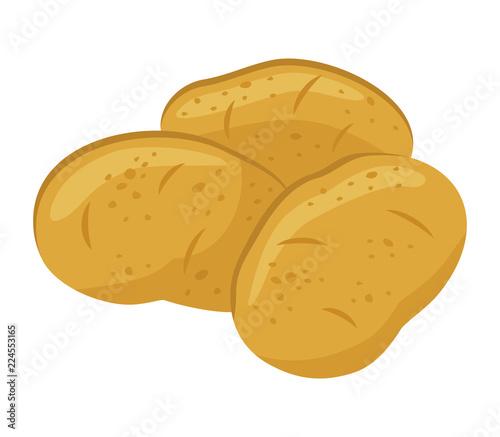 Carta da parati Potatoes isolated on white background, vector illustration.