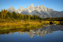 Autumn At Grand Teton National...