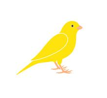 Canary Logo. Isolated Canary On White Background