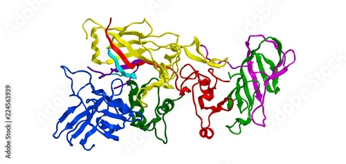 Molecular structure of Anthrax toxin, 3D rendering Wallpaper Mural