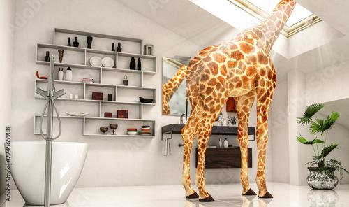 Fotografie, Obraz  Außergewöhnliche Giraffenwohnung (BAD)