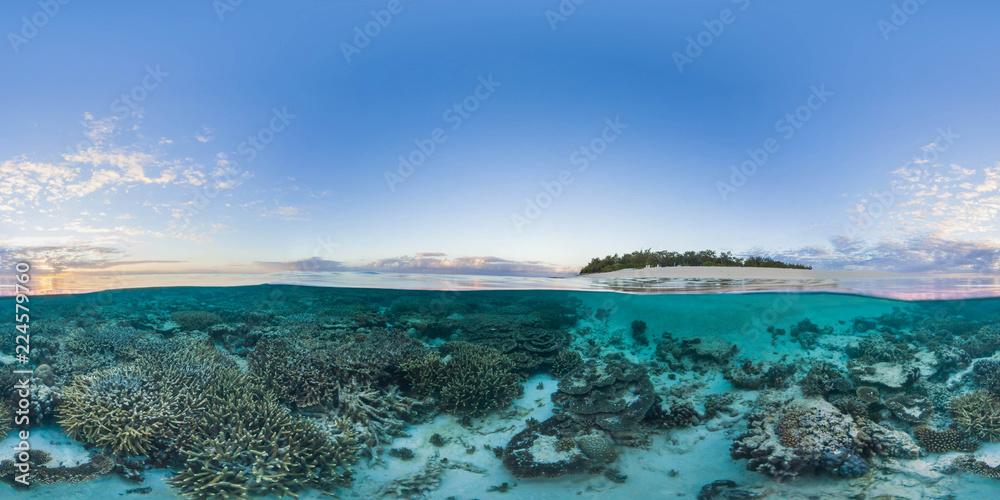 Fototapeta Island with coral reef