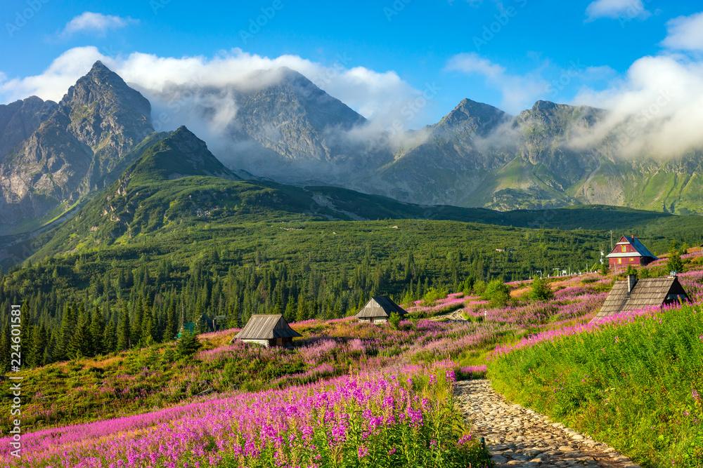 Fototapety, obrazy: Tatra mountain landscape