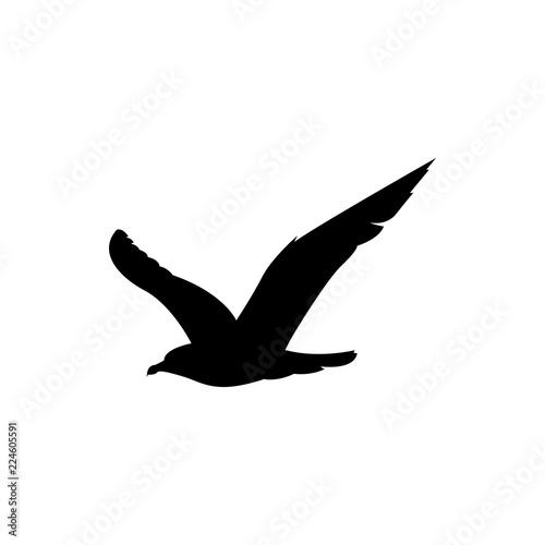 Fototapeta gull vector silhouette