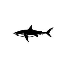 Shark Vector Silhouette
