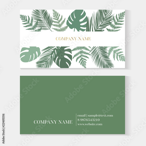 Trendy Minimal Abstract Tropical Business Card Template Modern Design With Monstera Palm Fern Leaves Creative Business Card Template Vector Fashion Green Design With Information Sample Name Text Buy This Stock Vector