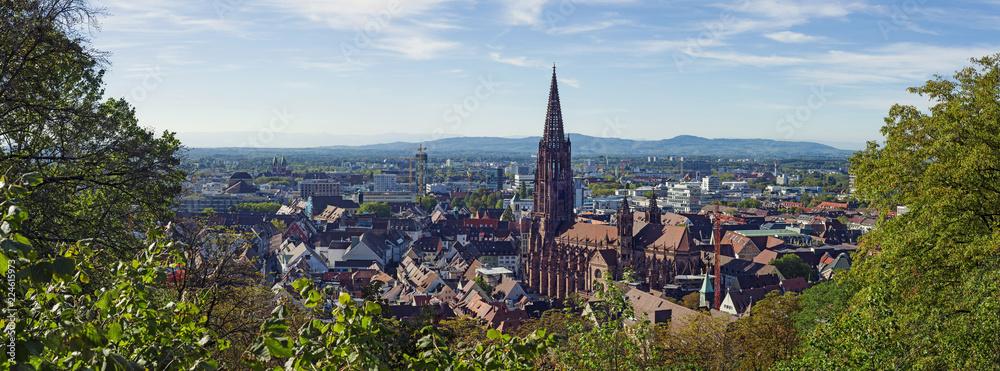 Fototapeta Freiburg im Breisgau