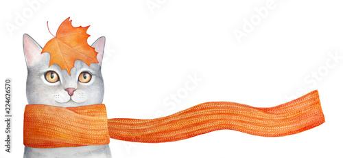 Cuadros en Lienzo Autumn vibes illustration: maple leaves falling down, knit scarf blowing in wind, smiling gray kitten looking forward