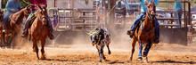 Australian Team Calf Roping Ro...