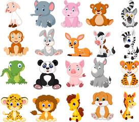 Cartoon animals collection set