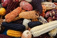 Mix Of Peruvian Native Variety...