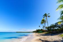 White Sandy Beach On A Small Pacific Island
