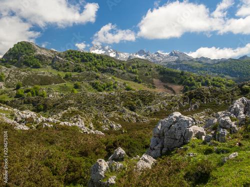 Landscape of the Picos de Europa in Asturias